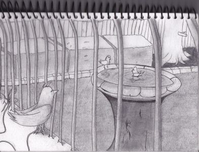 Trapped In A Cage